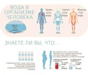 Сколько воды пить в сутки?