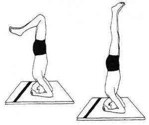Йога для продления жизни. Часть 2