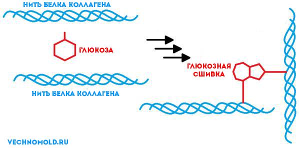 глюкозная сшивка