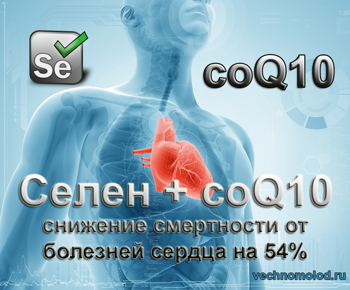 Коэнзим Q10 и селен